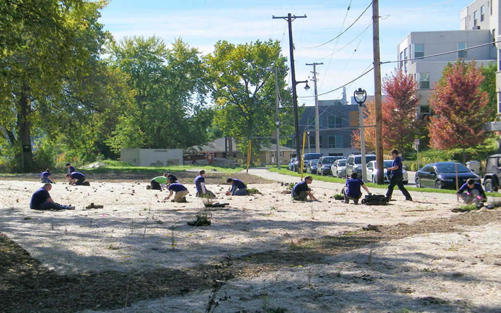 """Volunteers work to bring Turtle Park to live in this """"before"""" photo"""