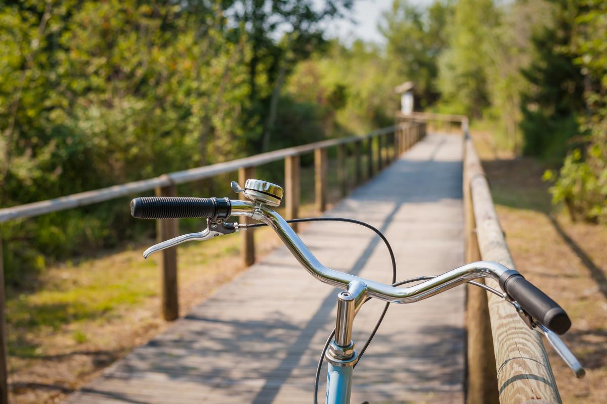bike on pathway